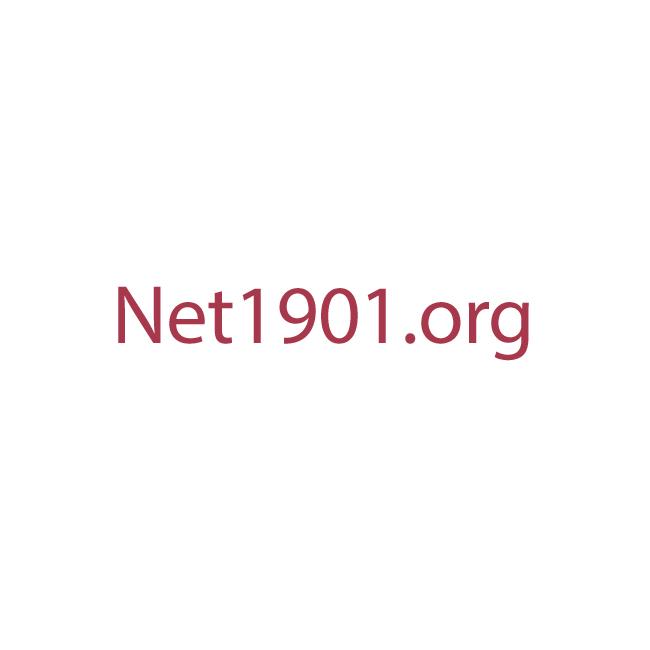 Net1901